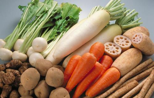 如何选择蔬菜配送软件的应用?