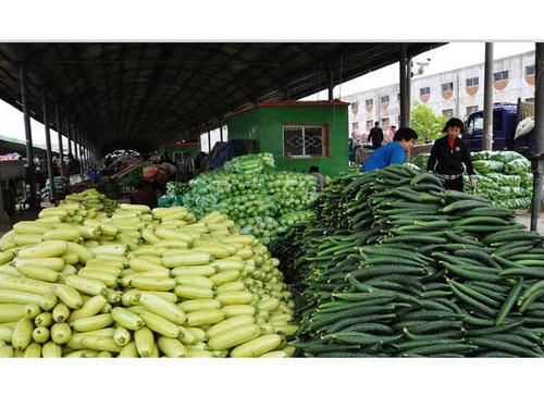 规划广州蔬菜配送的路线很重要