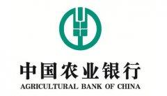 中国农业银行-广州食堂承包